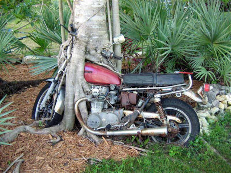 parkir-motor
